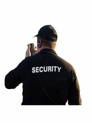security v1